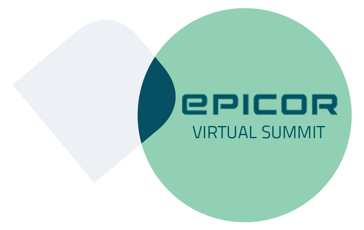 a banner image for the epicor virtual summit